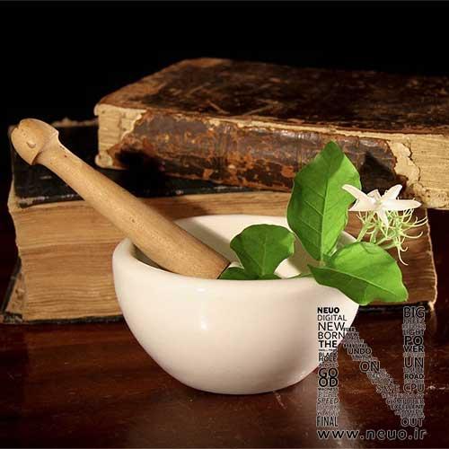 طب سنتی و مزاج ها و طبع ها